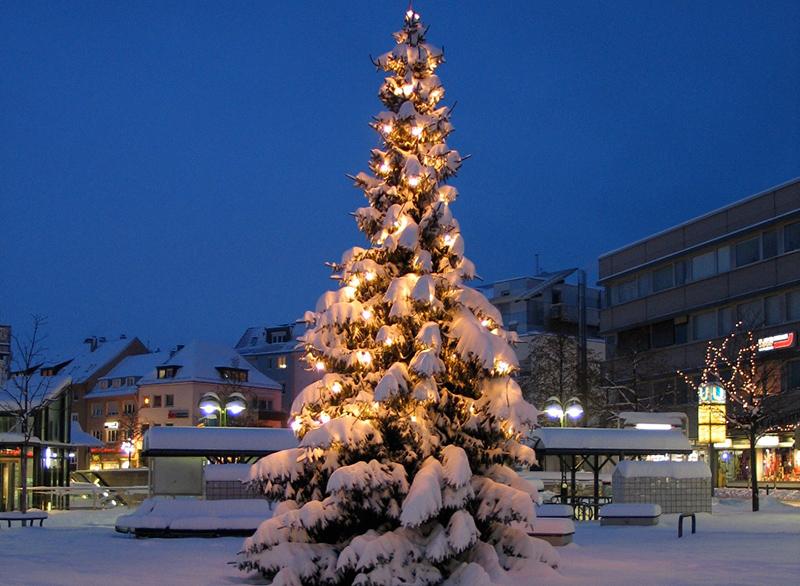 weihnachtsbaum f r weilimdorf gesucht stuttgart weilimdorf. Black Bedroom Furniture Sets. Home Design Ideas