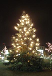 WGWeihnachtsbaum2007