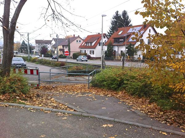 img_1380-leguanweg