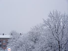 schneefall21112008