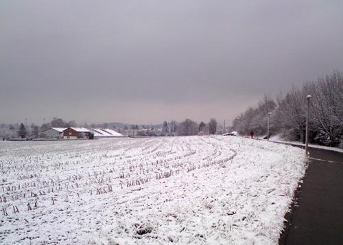schneenovember2010