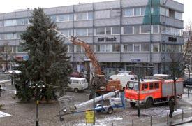 weihnachtsbaum2008aufstelle