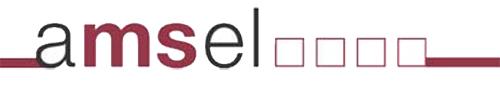 logo-amselev