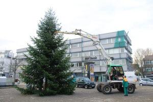 img_4381-weihnachtsbaum