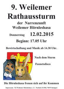 plakat-rathaussturm-2015