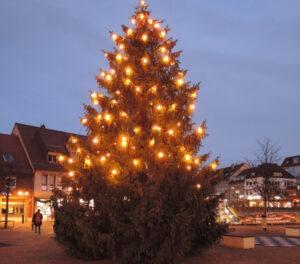 dscn3866-weihnachtsbaum2015