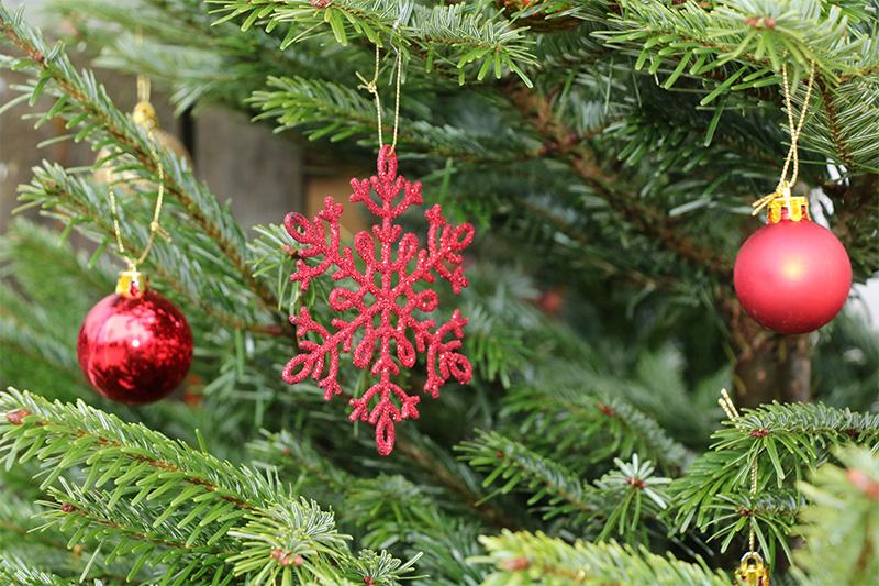 img_8571-weihnachtsbaum-schmuck