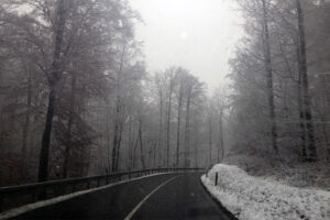 img_6862-bergheimer-steige-winterwetter