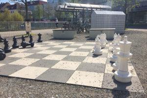 img_7026-schach-loewenmarkt