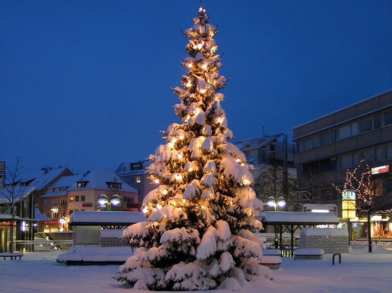 img_2772-weihnachtsbaum-fotoschrade