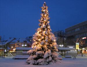 img_2772-weihnachtsbaum