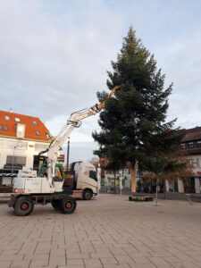 20191123_082609-weihnachtsbaum