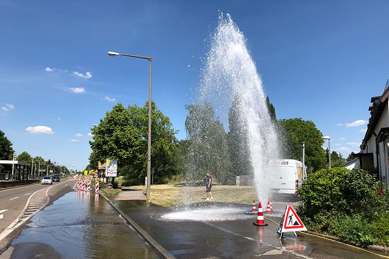 img_5790-hydrant-hmg