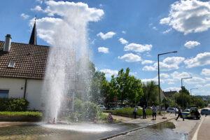 img_5793-hydrant-hmg