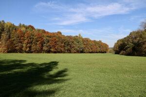 Lindental im Herbst
