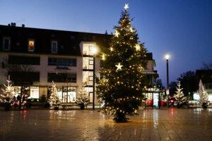 img_9677-weihnachtsbaum2020
