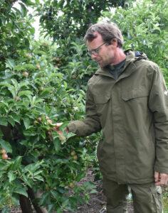 Chris Hörnle prüft die Äpfel 2021
